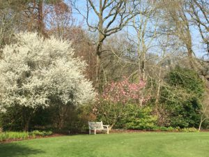 RHS Rosemoor https://wineandwisteriatravel.com