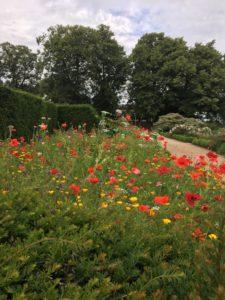 Wentworth Gardens
