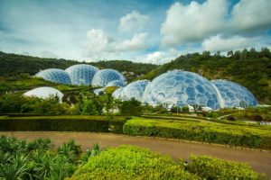 Eden Project is near to Deerpark forest