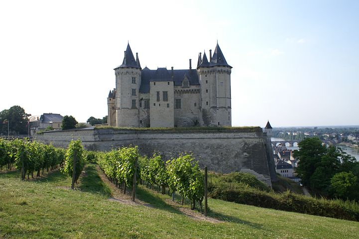 Fine Wines of Anjou and Saumur