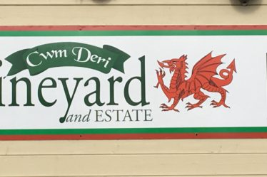 Cwm Deri Vineyard