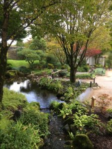 Japanese Garden at Wales National Botanical Gardens