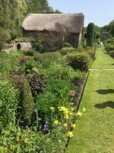The long border at The Garden House Devon