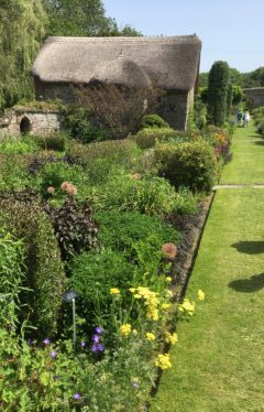 The long border at The Garden House Devon
