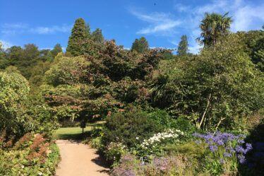 Killerton House and Gardens